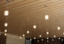 plafond hanglampen