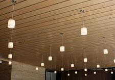 plafond hanglampen